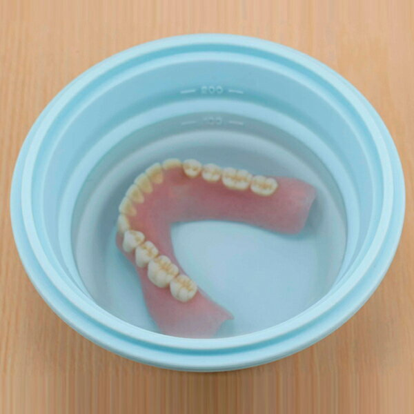 入れ歯 スリムにたためる 入れ歯ケース ( シリコン 入れ歯ポット 入れ歯洗浄 シリコンケース 携帯ケース いれば 差し歯 洗面用品 洗面グッズ ) 【3900円以上送料無料】