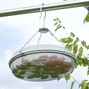干しかご 干し網 ドライフルーツバスケット 2段 ステンレス製 ( 干しざる 干しザル 天日干し ざる ザル 乾物 干物 吊…
