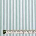超長綿先染ブロードロンスト・白×黄緑ストライプ太 50先染ブロード生地