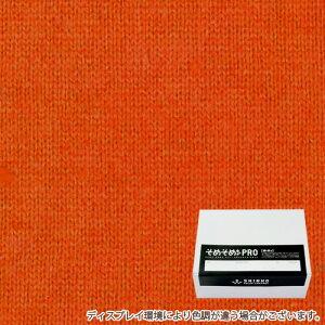 飴色(あめ色)に染める綿 麻布用染料 Lサイズ(1kgまでの素材用) そめそめキットPro  プロ仕様 家庭用 反応染料 染め粉 Tシャツ 布用 染色キット 布 服 ハンドメイド セット S-0139