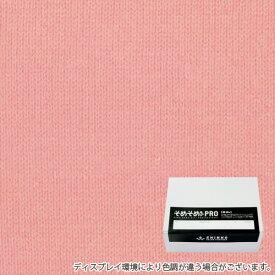サンライズピンク色に染める綿 麻布用染料 Sサイズ(200gまでの素材用) そめそめキットPro  プロ仕様 家庭用 反応染料 染め粉 Tシャツ 布用 染色キット 布 服 ハンドメイド セット S-0178