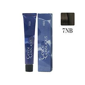 ナンバースリー カラーコンシャス グレイライン ニュートラル 7NB 80g(1剤)