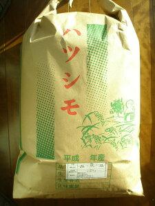 新米【令和1年度産】送料無料【生産者直売】 岐阜の米《代表品種》ハツシモ100% 玄米30kg 【岐阜県GAP】