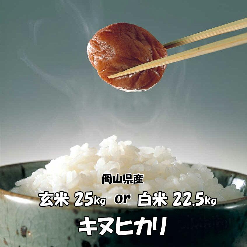 ★送料無料★H30年産 岡山県産 キヌヒカリ 玄米 25kg or 白米 22.5kg 搗きたて米をお届けします!
