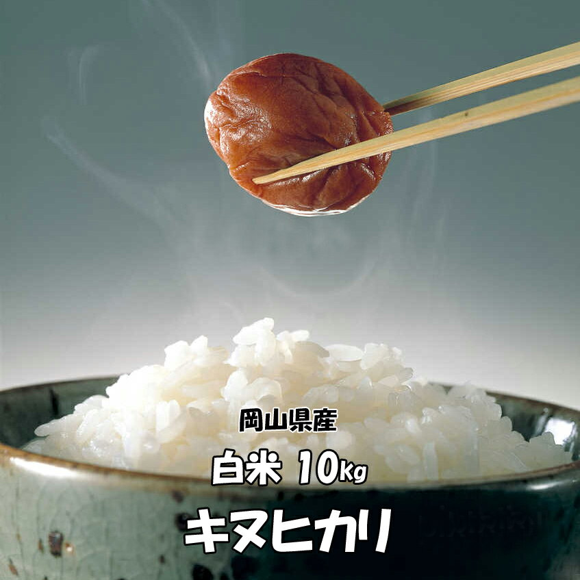 ★送料無料★H30年産 岡山県産 キヌヒカリ 白米 10kg 搗きたて米をお届けします!