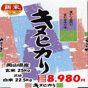 ★送料無料★令和元年産 岡山県産 キヌヒカリ 玄米 25kg or 白米 22.5kg搗きたて米をお届けします