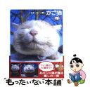 【中古】 かご猫 日本一のヘン顔 / SHIRONEKO / 宝島社 [単行本]【メール便送料無料】【あす楽対応】