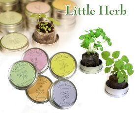 栽培セット ハーブ 小缶 園芸 ガーデニング インテリア ギフト 室内 かわいい 栽培キット