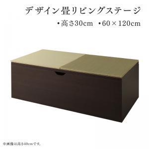 ユニット畳 収納 [畳ボックス収納 60×120 ロータイプ 日本製 収納付きデザイン畳リビングステージシリーズ そよ風]