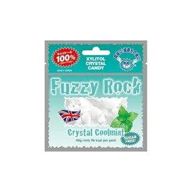 (定形外郵便)発送方法選択の際はメール便をご選択ください Fuzzy Rock(ファジーロック) キシリトールキャンディー クールミント味(40g)