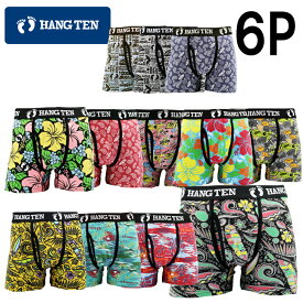 【新柄】HANG TEN 選べるハンテンボクサーパンツ6枚組 福袋 送料無料 M L LL 3L