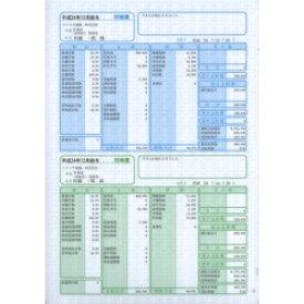 ソリマチ SR2301 給与・賞与明細書(明細タテ型)100枚入(対応OS:その他) メーカー在庫品