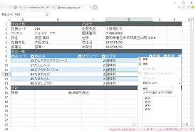 SpreadJS v12.0J(日本語版)1開発ライセンス+バックアップDVD