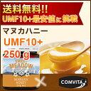 送料無料 UMF 10+ マヌカハニー 250g 【MGO(MG)262〜514mg相当】 Sweet Meadow【まとめ買い割引:楽天クーポン】【あ…