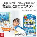 【送料無料!】ぷかぷかゼミ お風呂ポスター 水めがねで発見 ダイビング PKZ602 観察力を鍛える 知育 教育 学習 学ぶ …