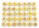 クッキーメール(チョコラングドシャ、02-CM-WG)【楽ギフ_のし】【楽ギフ_のし宛書】
