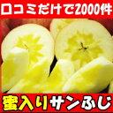口コミだけで2000件の注文!長野原田農園蜜入りサンふじ5kg16〜18玉 贈答 中玉 りんご リンゴ りんご 蜜入り りんご …