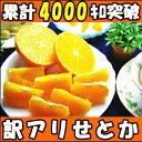 大人へ捧げる 最高級柑橘!みかんの大トロ和歌山 有田 生勇農園指 せとか5kg家庭用 せとか 訳あり せとか 5kg せとか …