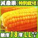 生食OK!メロンより甘い!安全の特別栽培認定 北海道三栄アグリ特別栽培認定とうもろこし2L10本入 とうもろこし 北海道 とうもろこし 送料無料 とうもろこし ...
