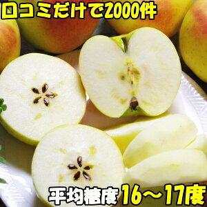 りんご 送料無料 ぐんま名月 口コミ2000件 噂のリンゴ ぐんま名月 長野 信州 原田農園 3kg 6〜12玉 訳あり 家庭用 送料無料