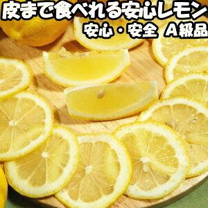 レモン 国産 訳あり 安心 防腐剤 不使用 ノーワックス 10kg B品 皮まで食べれる 和歌山 有田さんさん リスボン レモン 10kg B わけあり 家庭用 黄色