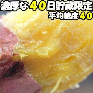さつまいも 紅はるか 熟成 5kg 送料無料 大分 芦刈農産 ねっとり 濃厚 サツマイモ 蔵出し べにはるか l〜m サイズ 贈答用 お歳暮 ギフト ホクホク さつま芋