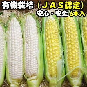 とうもろこし 無農薬 JAS認証 有機栽培 オーガニック とうもろこし 生でも食べれる トウモロコシ 食べ比べ 白色3本+黄色3本 合計6本 茨城産 レインボーフューチャー直送 送料無料