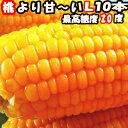 とうもろこし 恵味 県外不出 桃より甘い 生で食べれるとうもろこし めぐみ 長野産 トウモロコシ Lサイズ 12本 3.6〜4.…