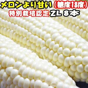 【出荷中】とうもろこし 北海道 甘い メロンより甘い 安心の特別栽培認定 生で食べれる 白い トウモロコシ 平均糖度18度 ホワイトショコラ 8本入 北海道 三栄アグリ 送料無料