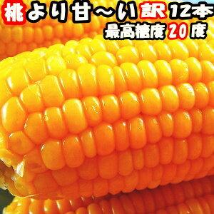 とうもろこし 生 県外不出 桃より甘い 生で食べれるとうもろこし めぐみ 長野 訳アリ 2L-Lサイズ混合 12本