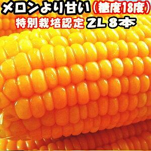 とうもろこし 北海道 甘い メロンより甘い 安心の特別栽培認定 朝どれ 生で食べれる トウモロコシ 平均糖度18度 夢のコーン わくわくコーン 2L〜L サイズ 8本入 北海道 三栄アグリ 送料無料