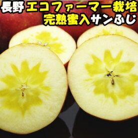 りんご 蜜入り サンふじ 完熟りんごはおいしさが違う 蜜入りりんご サンフジ 長野 信州 丸茂ファーム 3kg 6〜12玉 訳あり 家庭用 送料無料