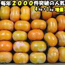 柿 訳あり 種なし柿 奈良 西吉野 柳澤果樹園 たねなし柿 4kg+増量約1kg 計約 5kg 15〜25玉 家庭用 送料無料 種無し柿…