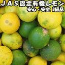レモン 無農薬 3kg B品 訳あり 国産 佐賀 JAS認定 有機 皮まで食べれる レモン 家庭用