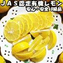 レモン 無農薬 10kg A品 国産 JAS認定 有機 皮まで食べれる 佐賀 佐藤農場 レモン
