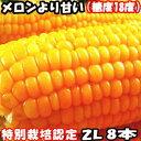 とうもろこし 送料無料 北海道 メロンより甘い 安心の特別栽培認定 生で食べれるとうもろこし 平均糖度18度 夢のコー…