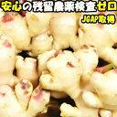 新生姜 国産 長崎 島原 松本農園 新 ショウガ 約1kg 甘酢 しょうが 佃煮 料理用途多数 新 生姜 シンショウガ しんしょ…