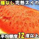 種なし スイカ 特別栽培準拠 糖度12度以上 完熟 種なしスイカ 大玉 鳥取 徳山農園 L-Mサイズ 1玉