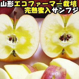 りんご 蜜入り 訳あり ふじ サンふじ 糖度 減農薬 エコファーマー わけあり 完熟 蜜 リンゴ サンフジ 山形 太田農園 蜜入りりんご 10kg 24〜46玉 家庭用 送料無料