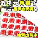 さくらんぼ 東京某高級スーパーが惚れ込む味と品質 山形 完熟さくらんぼ 畑の宝箱 24粒 2L〜L大