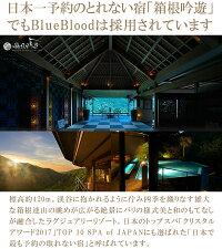 【送料無料】全てのまくら難民へ!ブルーブラッドBlueBlood3D体感ピロー/65x40cm※北海道/沖縄/離島は送料540円