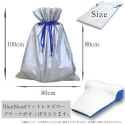 giftbagLサイズ詳細
