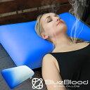 【ギフト対応無料】 ブルーブラッド3D体感ピロー BlueBlood 枕 マクラ 全てのまくら難民に!まるで無重力の寝心地 肩…