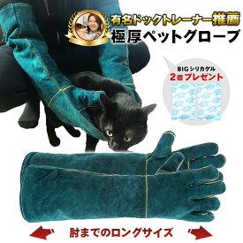 [和田工業] [有名ドッグトレーナー推薦] ペットグローブ 噛みつき 引っかき 牛革 厚手 保護手袋 犬 猫 爬虫類 園芸 耐摩耗性 耐熱性 ロング 肘