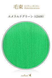 毛束 70x100cm【エメラルドグリーン】 緑 グリーン 緑色 耐熱 毛束ウイッグ(035 ex-t2608)