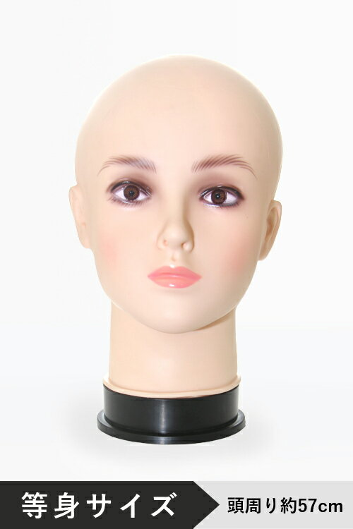 【新発売】ヘッド マネキン 頭 顔 トルソー ◆等身サイズ◆スワローテイルオリジナル