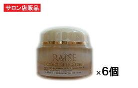 RAISE パーフェクトワンクリーム 50g×6個 【R-cell(リセル)】 EGF IGF FGF TGF 馬プラセンタ 低分子コラーゲン セラミド アルブチン等 高機能 サロン専売オールインワン美容クリーム
