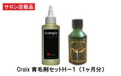 お得な育毛剤セット医薬部外品育毛剤evangile+Croixスカルプエッセンス