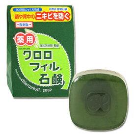 【価格据え置き】5%還元 黒龍堂 薬用 クロロフィル石鹸 枠練石鹸
