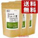●送料無料! 河村農園 国産 有機栽培 グァバ茶 3g(15包入)×3個セット kwfa *